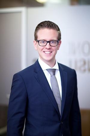 Dcp deutsche consulting partner for Junior consultant