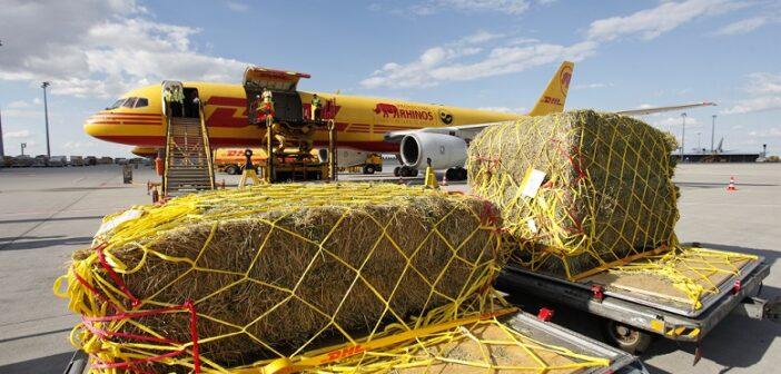 DHL Express 360 Flugzeuge 220 Länder
